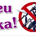 Deu zika! Saiba sobre essa epidemia.